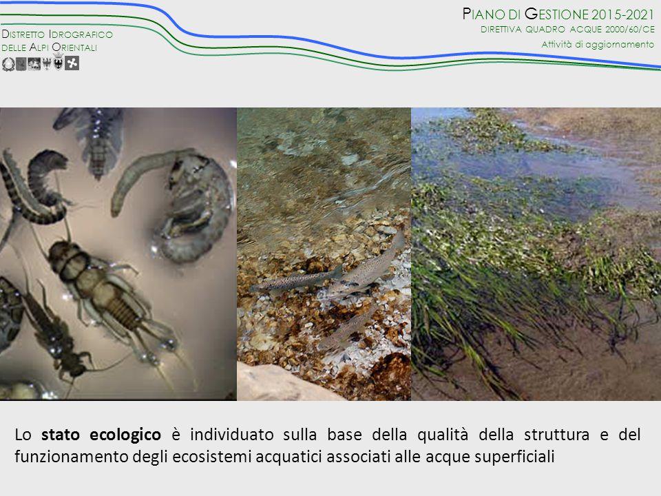 ….ecologico……. Nei casi in cui lo stato viene riconosciuto come elevato, questo viene confermato anche attraverso lo stato idromorfologico