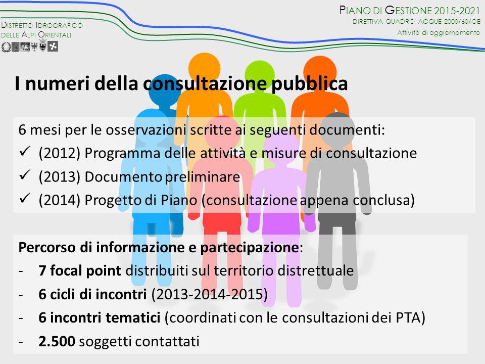 I numeri della consultazione pubblica
