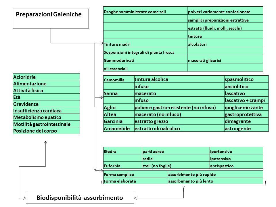 Biodisponibilità-assorbimento