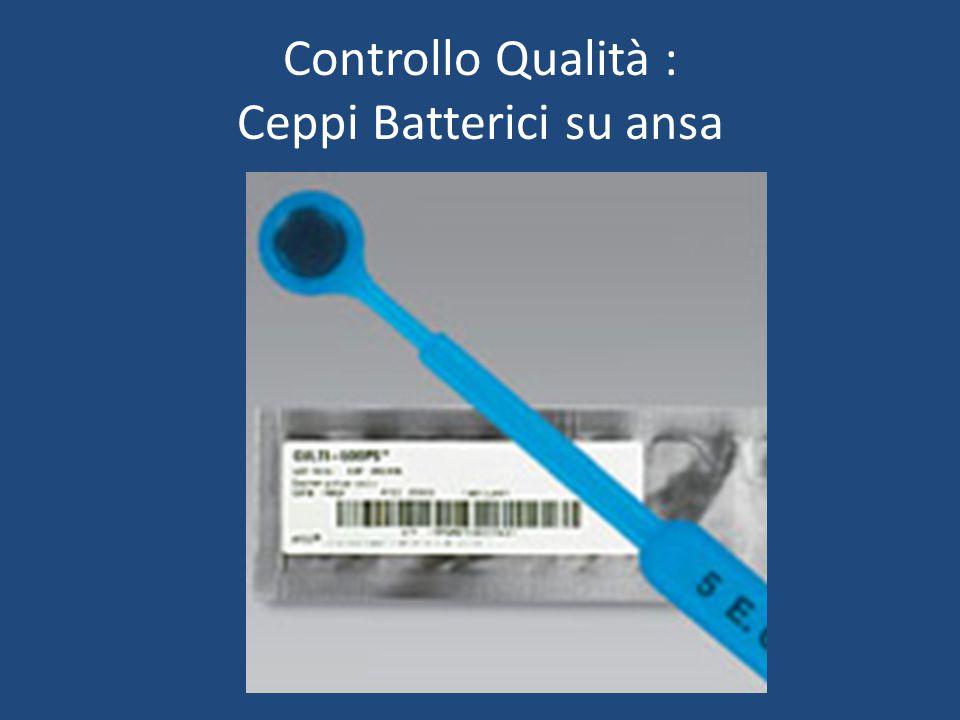 Controllo Qualità : Ceppi Batterici su ansa