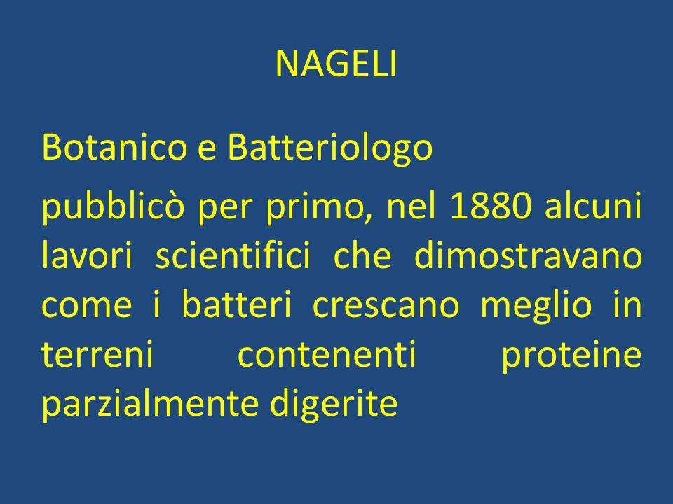 NAGELI