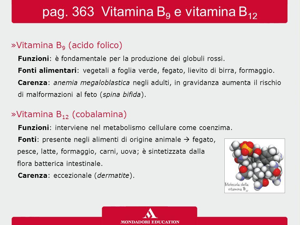 pag. 363 Vitamina B9 e vitamina B12