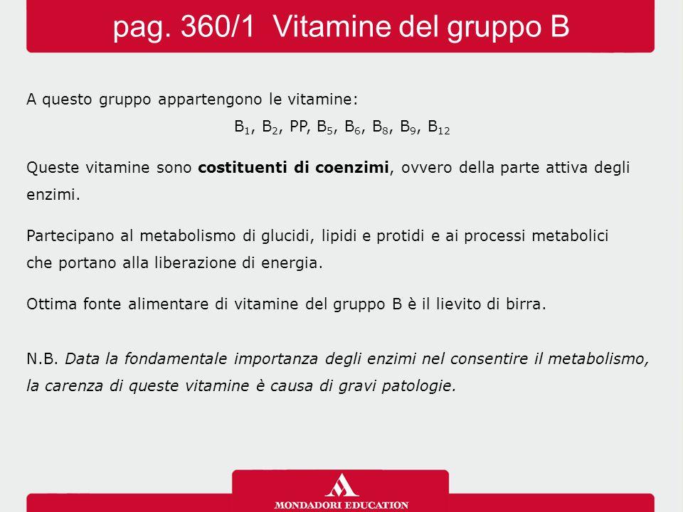 pag. 360/1 Vitamine del gruppo B