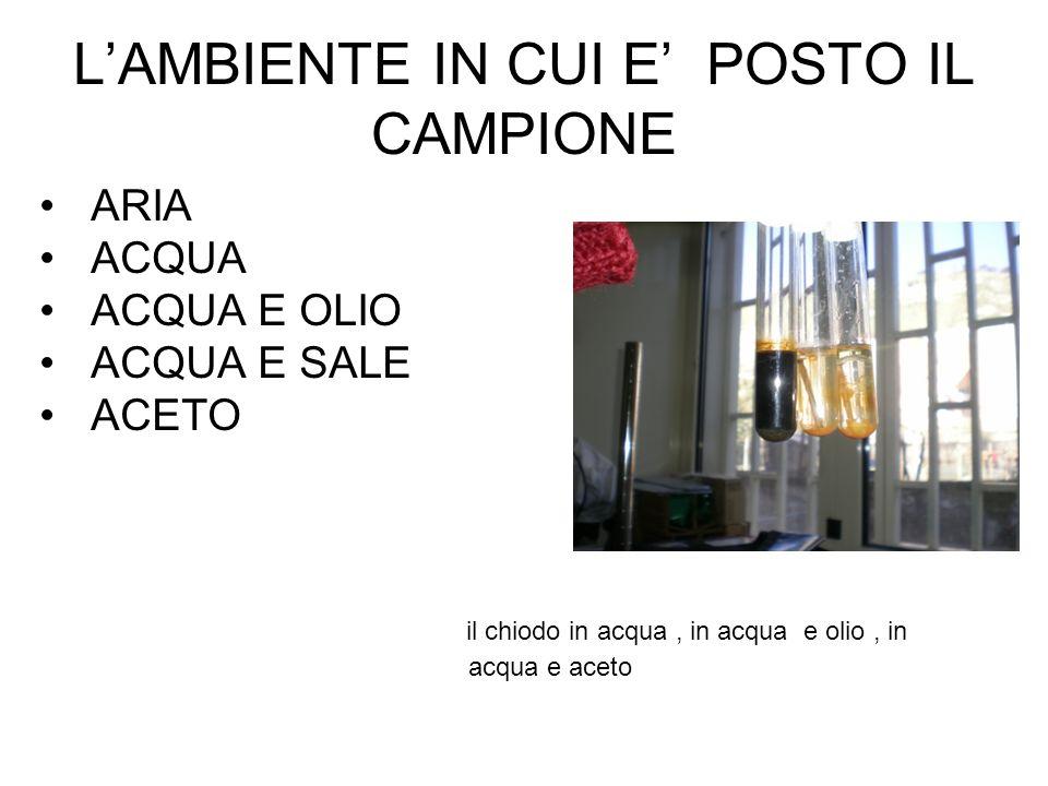 L'AMBIENTE IN CUI E' POSTO IL CAMPIONE