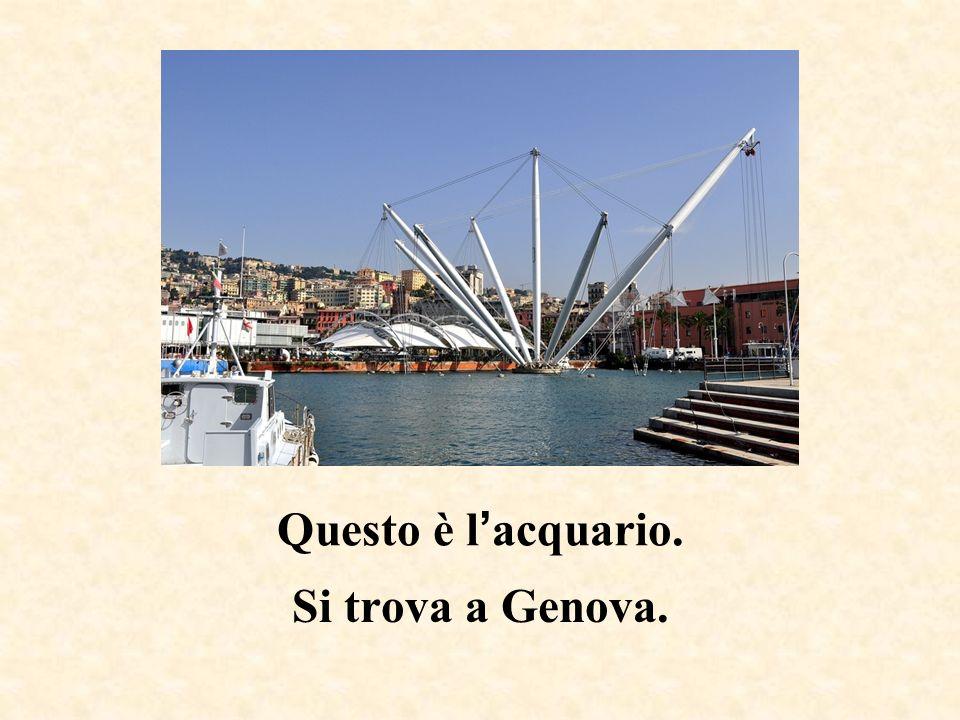 Questo è l'acquario. Si trova a Genova.
