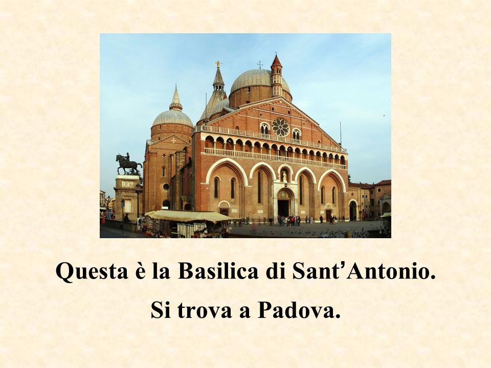 Questa è la Basilica di Sant'Antonio.
