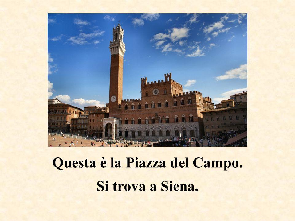 Questa è la Piazza del Campo.