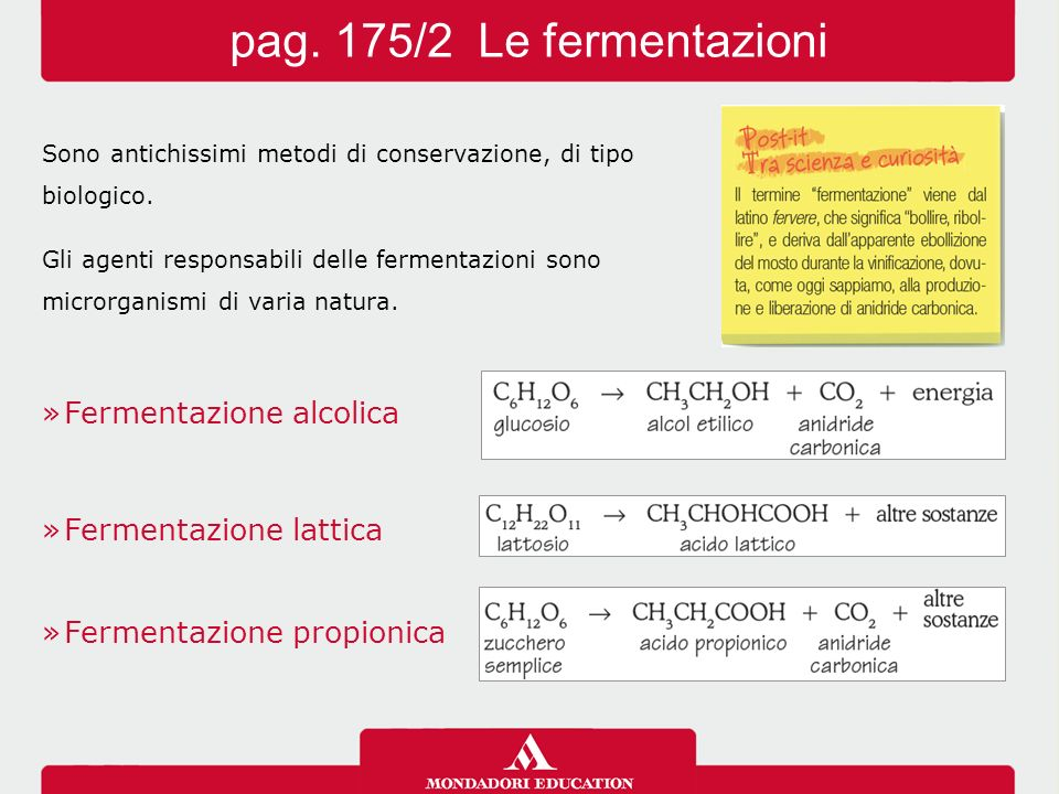 pag. 175/2 Le fermentazioni Fermentazione alcolica