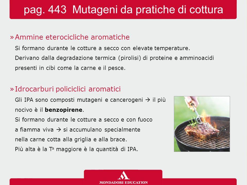 pag. 443 Mutageni da pratiche di cottura
