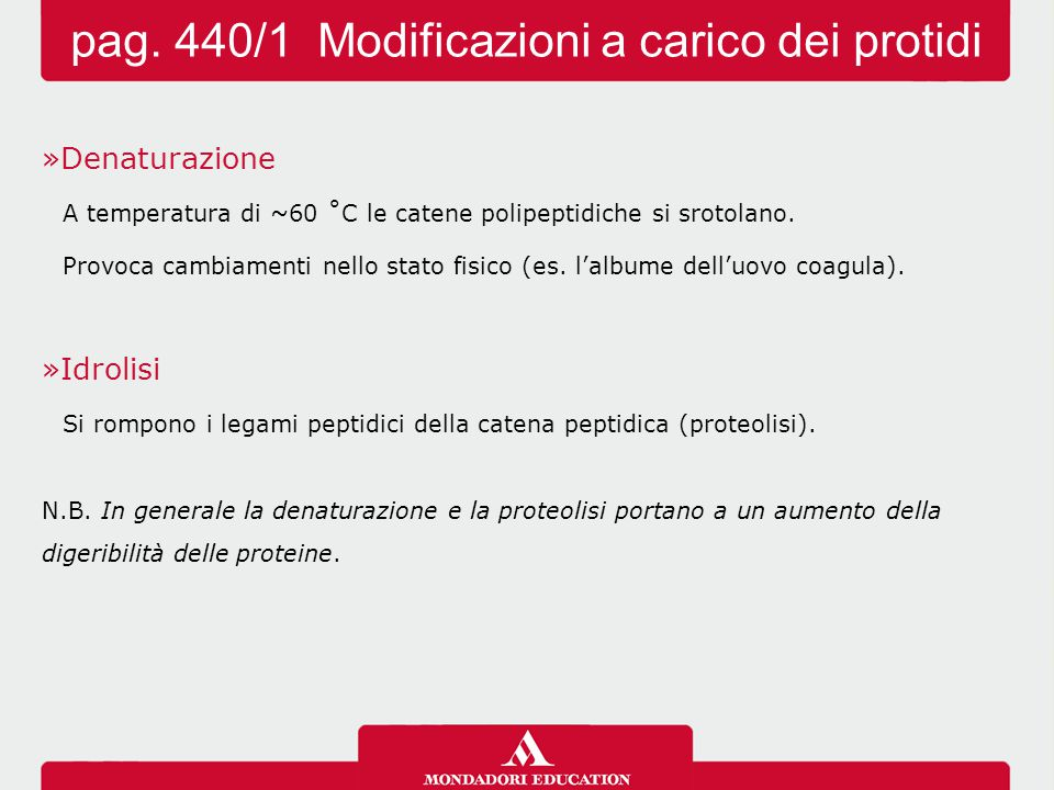 pag. 440/1 Modificazioni a carico dei protidi