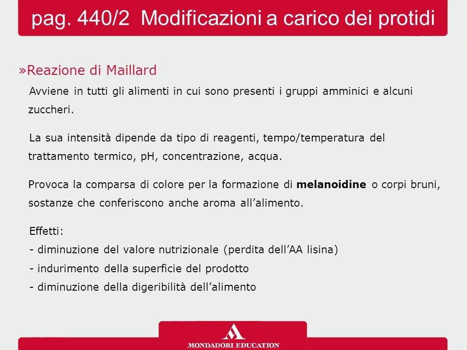 pag. 440/2 Modificazioni a carico dei protidi