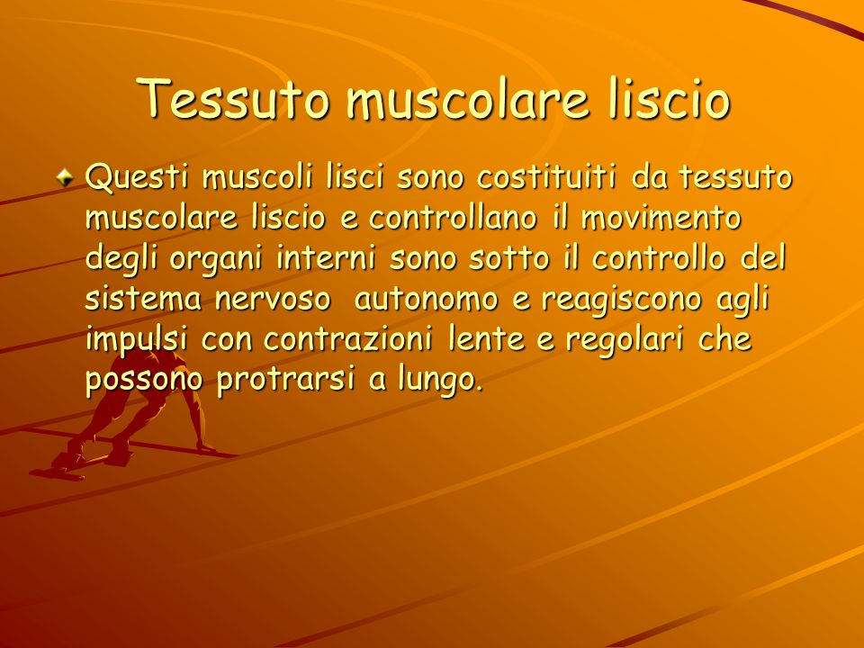 Tessuto muscolare liscio