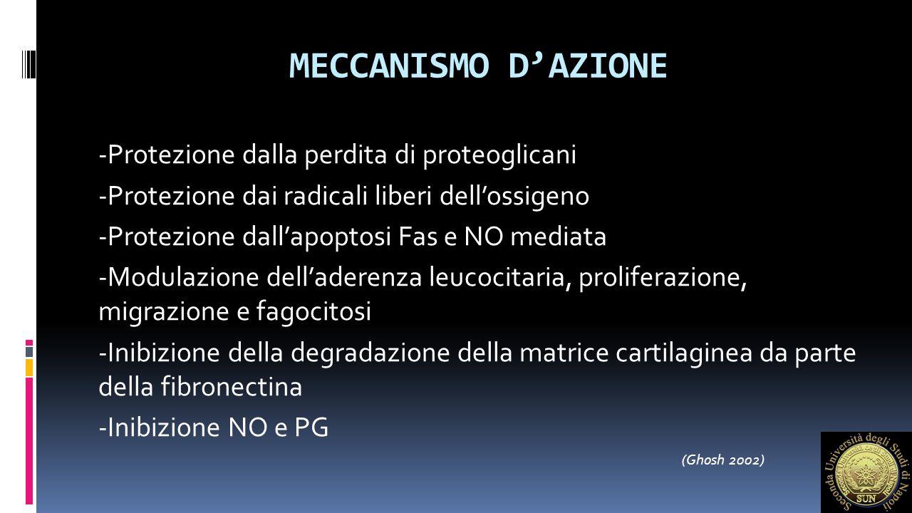 MECCANISMO D'AZIONE -Protezione dalla perdita di proteoglicani