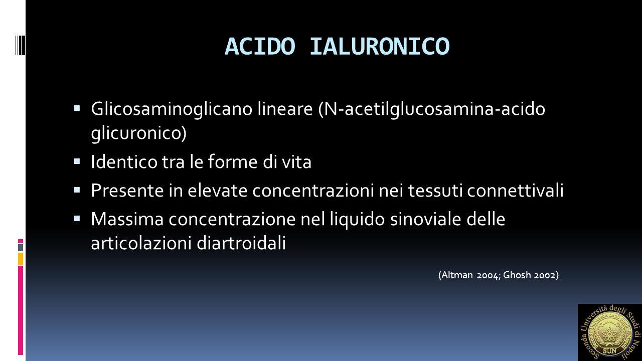 ACIDO IALURONICO Glicosaminoglicano lineare (N-acetilglucosamina-acido glicuronico) Identico tra le forme di vita.