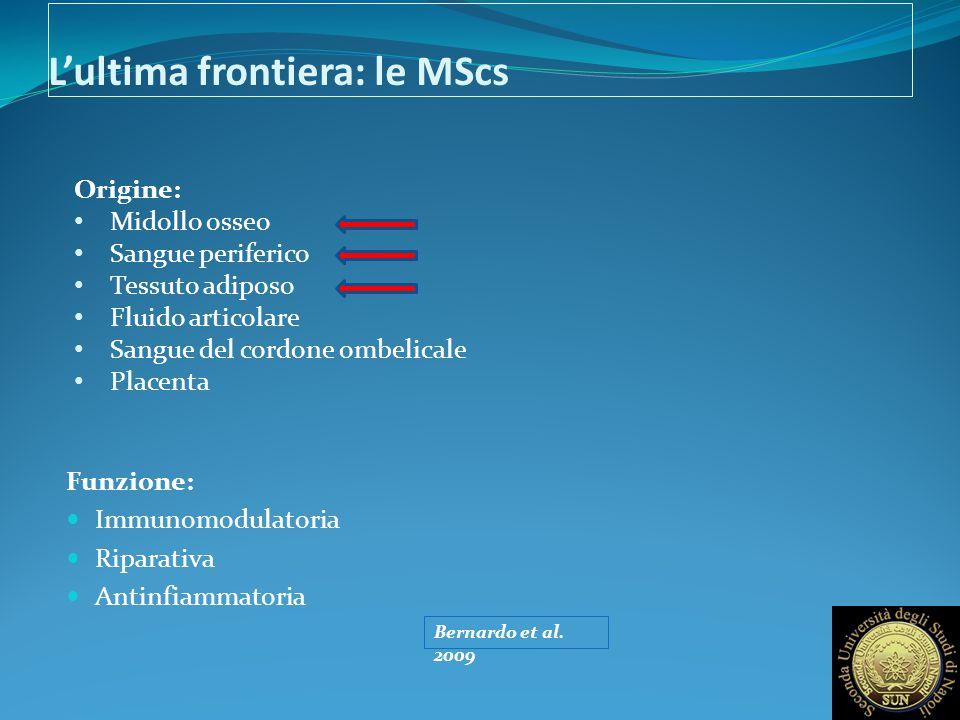 L'ultima frontiera: le MScs