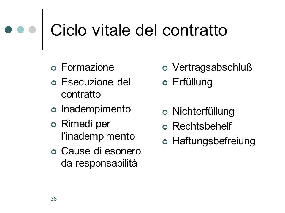 Ciclo vitale del contratto
