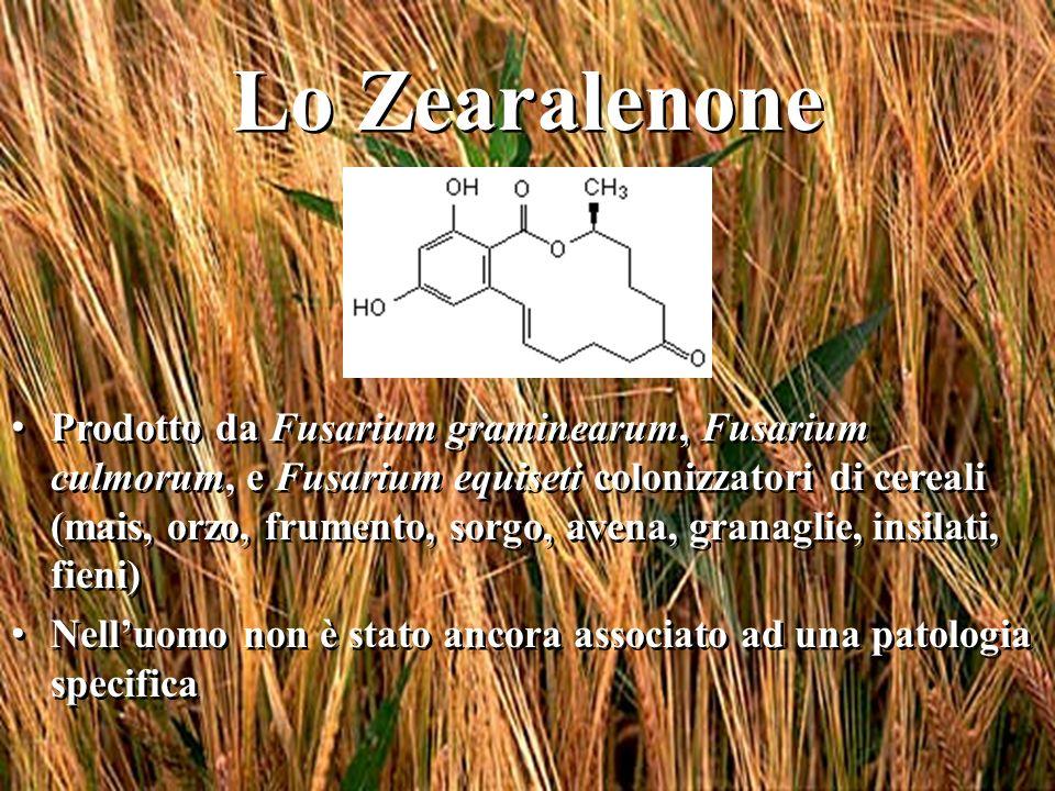 Lo Zearalenone