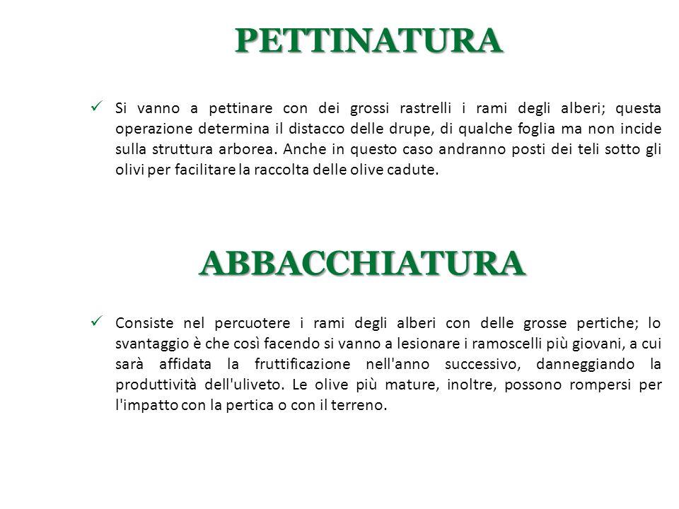 PETTINATURA ABBACCHIATURA