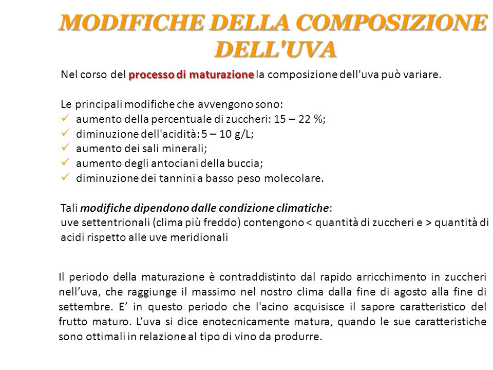 MODIFICHE DELLA COMPOSIZIONE