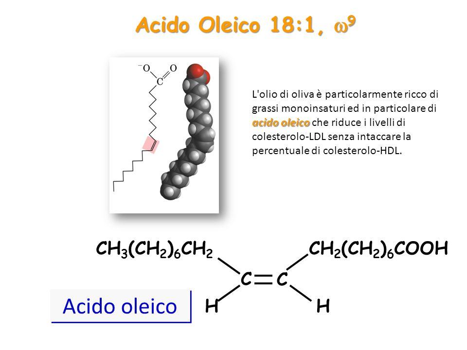 Acido oleico Acido Oleico 18:1, w9 CH3(CH2)6CH2 CH2(CH2)6COOH C H