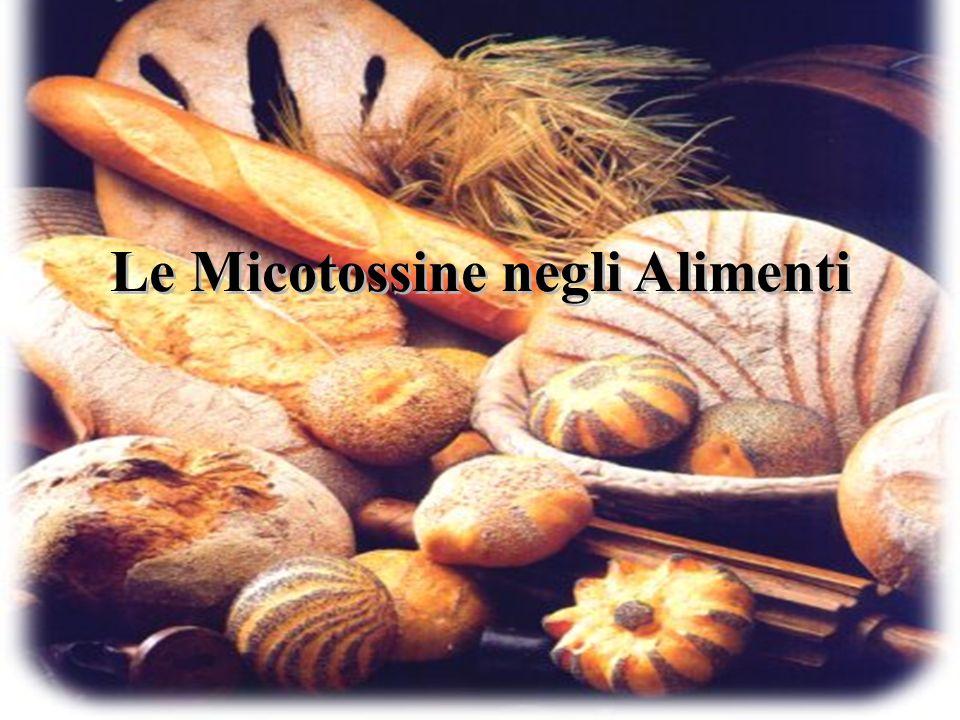 Le Micotossine negli Alimenti