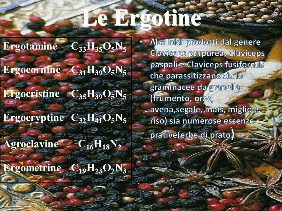 Le Ergotine Ergotamine C33H35O5N5 Ergocornine C31H39O5N5 Ergocristine