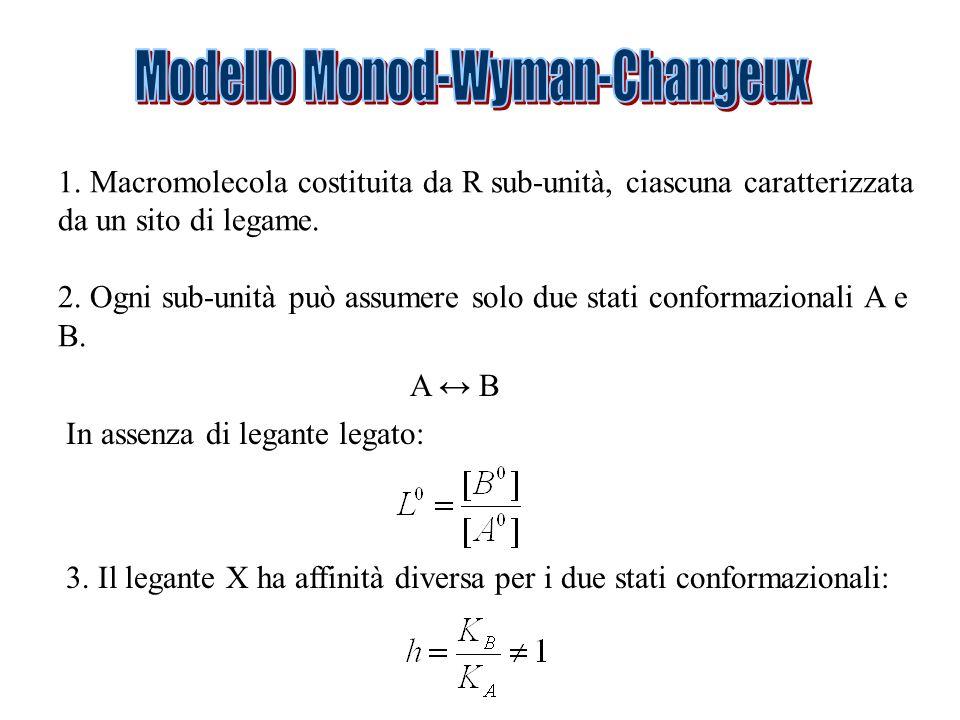 Modello Monod-Wyman-Changeux