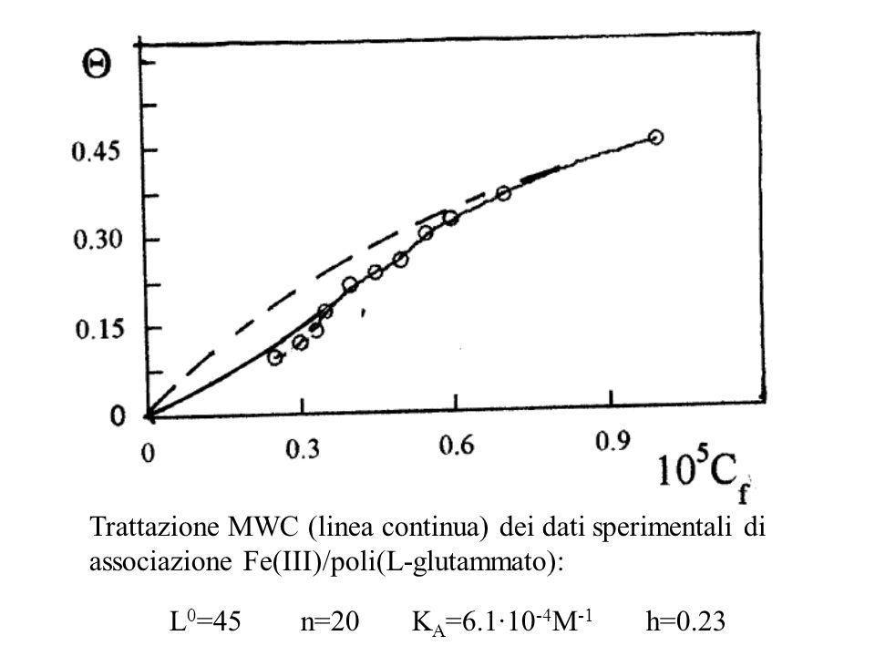 Trattazione MWC (linea continua) dei dati sperimentali di associazione Fe(III)/poli(L-glutammato):