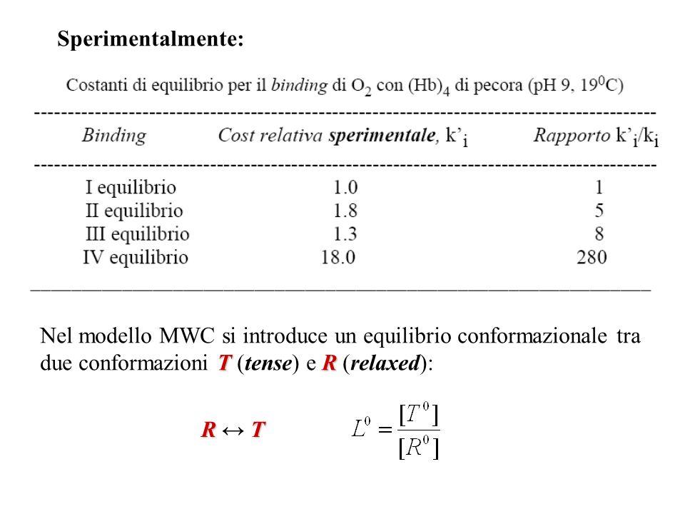 Sperimentalmente: Nel modello MWC si introduce un equilibrio conformazionale tra due conformazioni T (tense) e R (relaxed):