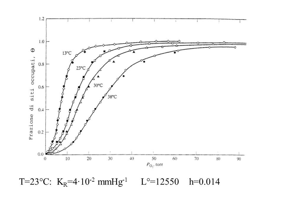 T=23°C: KR=4·10-2 mmHg-1 L°=12550 h=0.014
