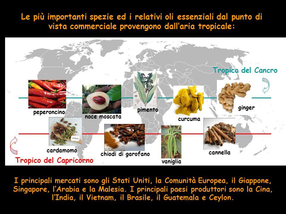 Le più importanti spezie ed i relativi oli essenziali dal punto di vista commerciale provengono dall'aria tropicale: