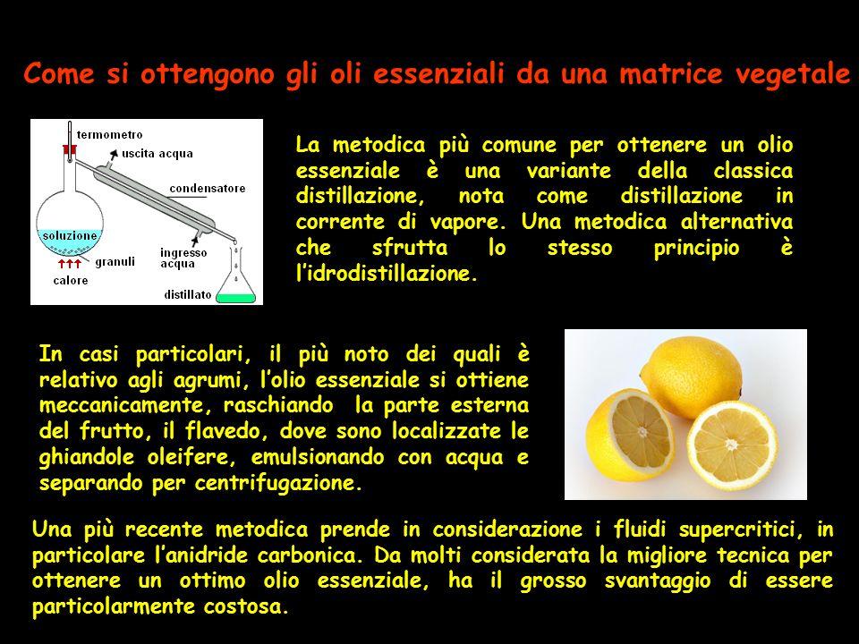 Come si ottengono gli oli essenziali da una matrice vegetale
