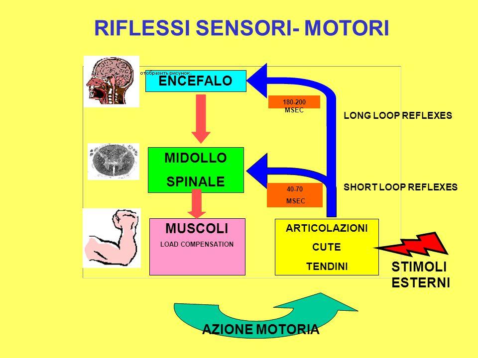 RIFLESSI SENSORI- MOTORI