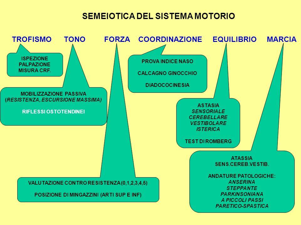 SEMEIOTICA DEL SISTEMA MOTORIO