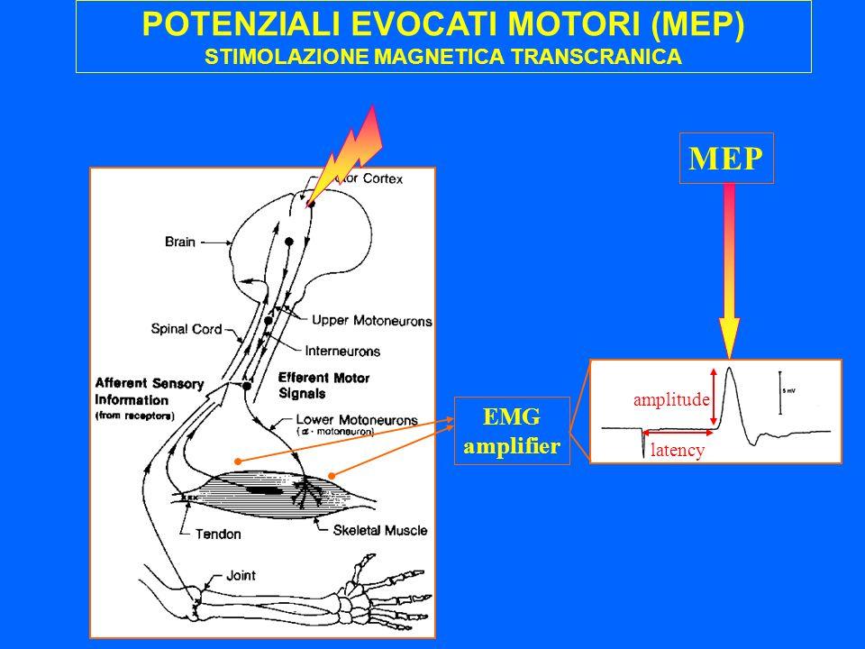 POTENZIALI EVOCATI MOTORI (MEP) STIMOLAZIONE MAGNETICA TRANSCRANICA