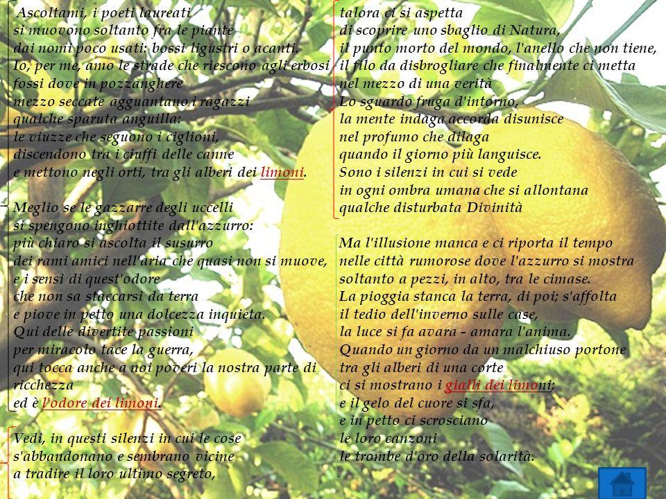 Ascoltami, i poeti laureati si muovono soltanto fra le piante dai nomi poco usati: bossi ligustri o acanti.