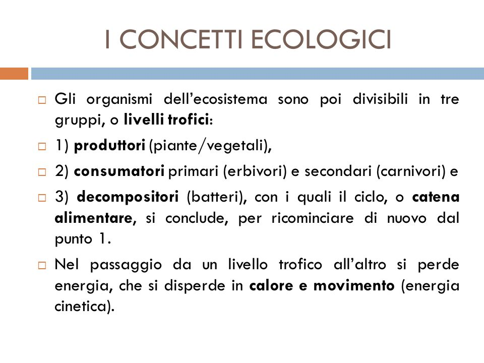 I CONCETTI ECOLOGICI Gli organismi dell'ecosistema sono poi divisibili in tre gruppi, o livelli trofici: