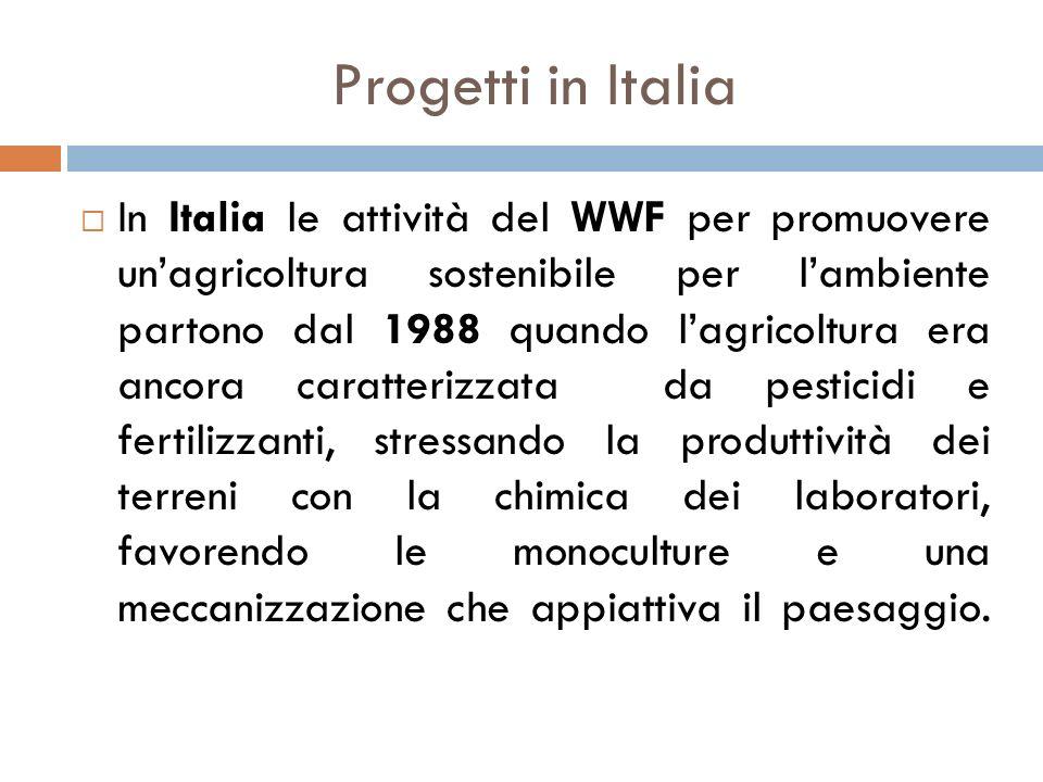 Progetti in Italia