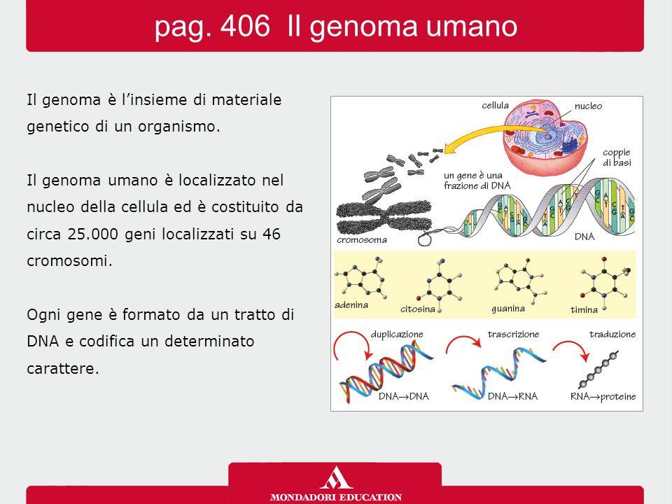 pag. 406 Il genoma umano Il genoma è l'insieme di materiale