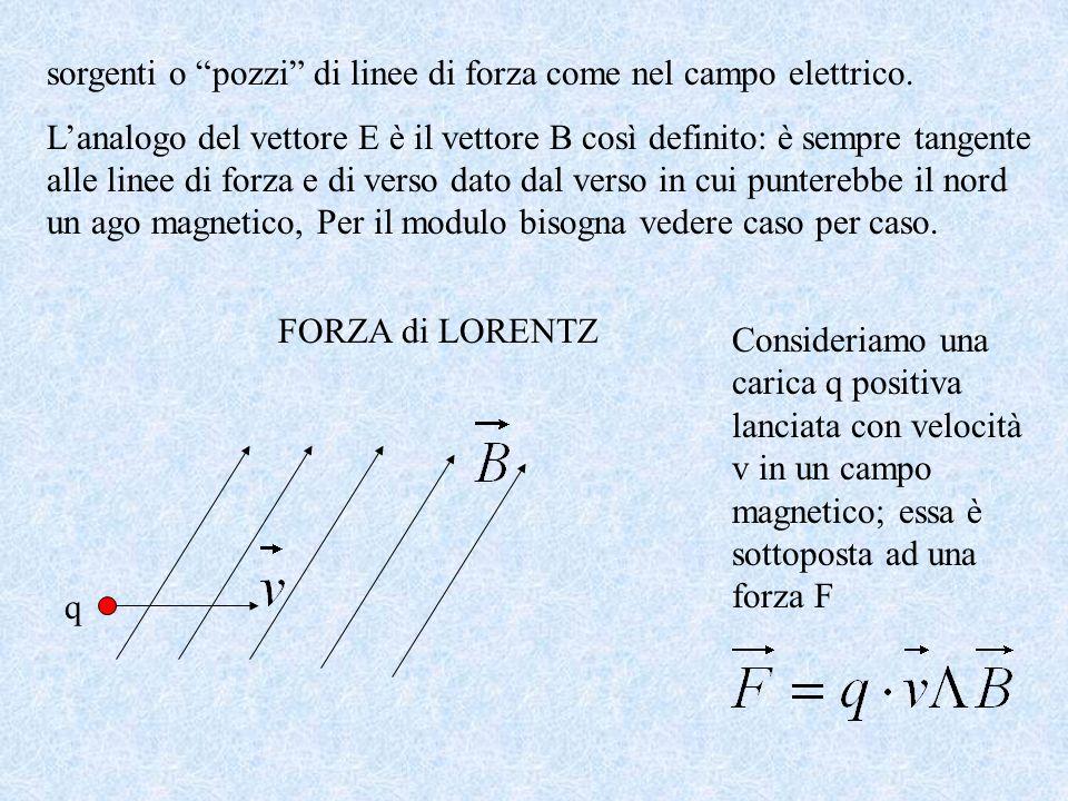 sorgenti o pozzi di linee di forza come nel campo elettrico.