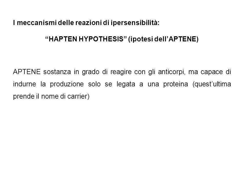 HAPTEN HYPOTHESIS (ipotesi dell'APTENE)