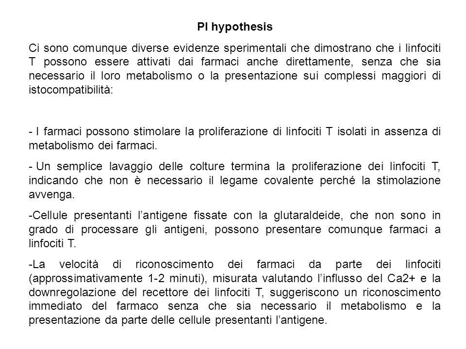 PI hypothesis