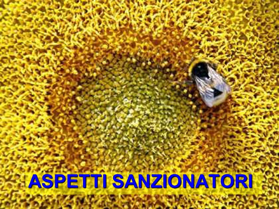 ASPETTI SANZIONATORI Bologna, 19 Maggio 2009