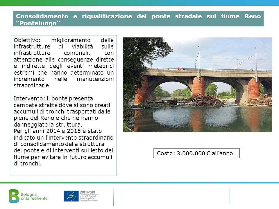 Consolidamento e riqualificazione del ponte stradale sul fiume Reno Pontelungo