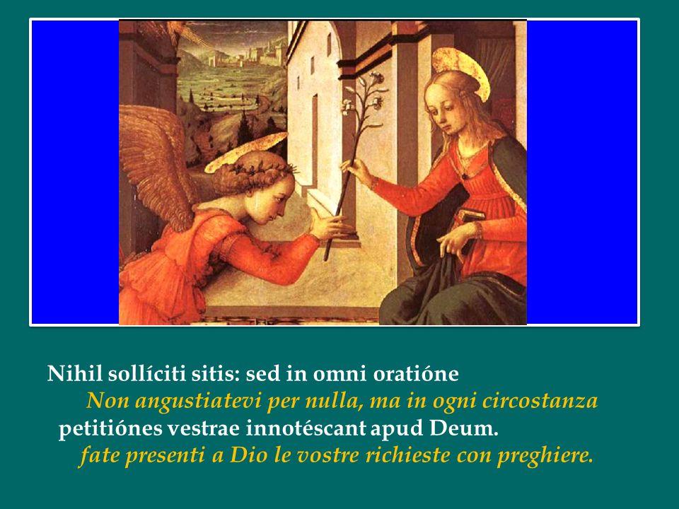 Nihil sollíciti sitis: sed in omni oratióne