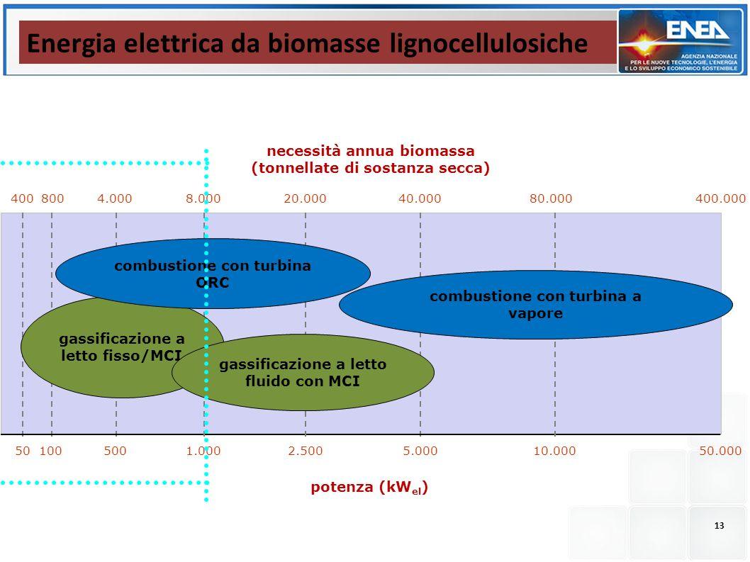 Energia elettrica da biomasse lignocellulosiche