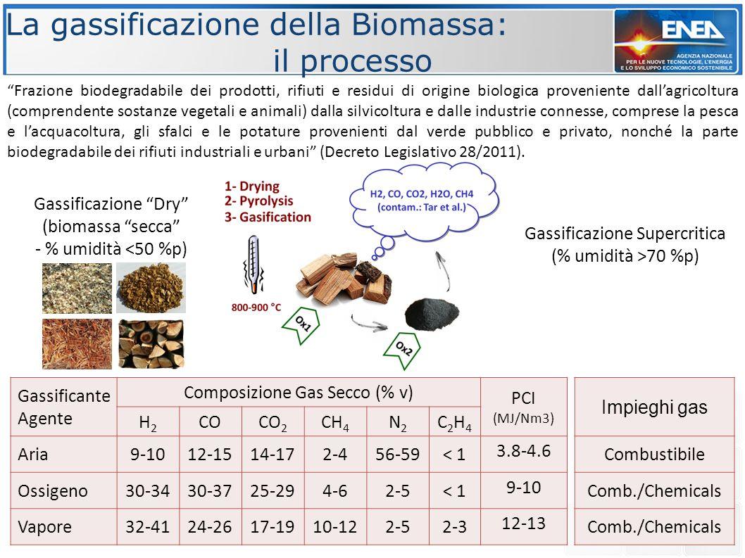 La gassificazione della Biomassa: il processo