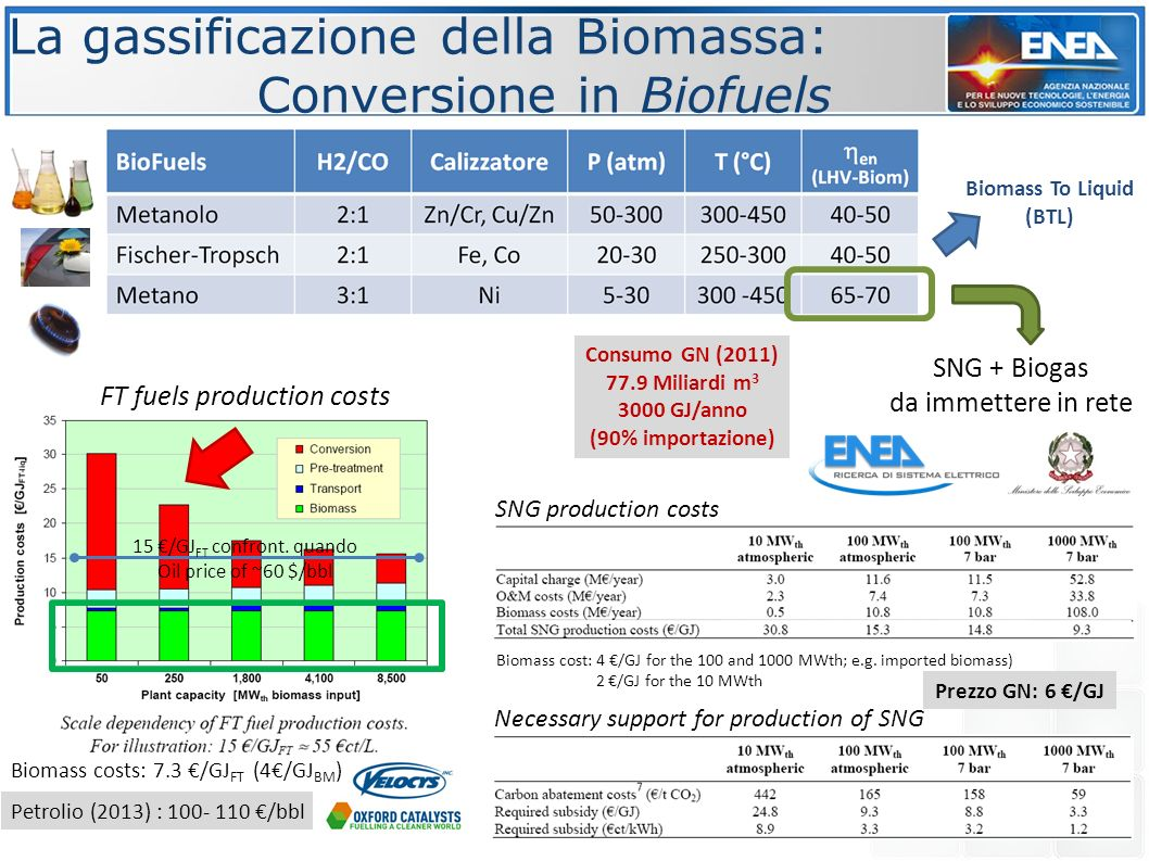 La gassificazione della Biomassa: Conversione in Biofuels