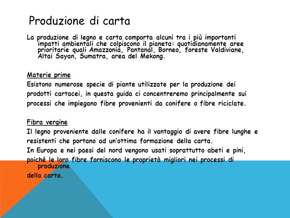 Produzione di carta