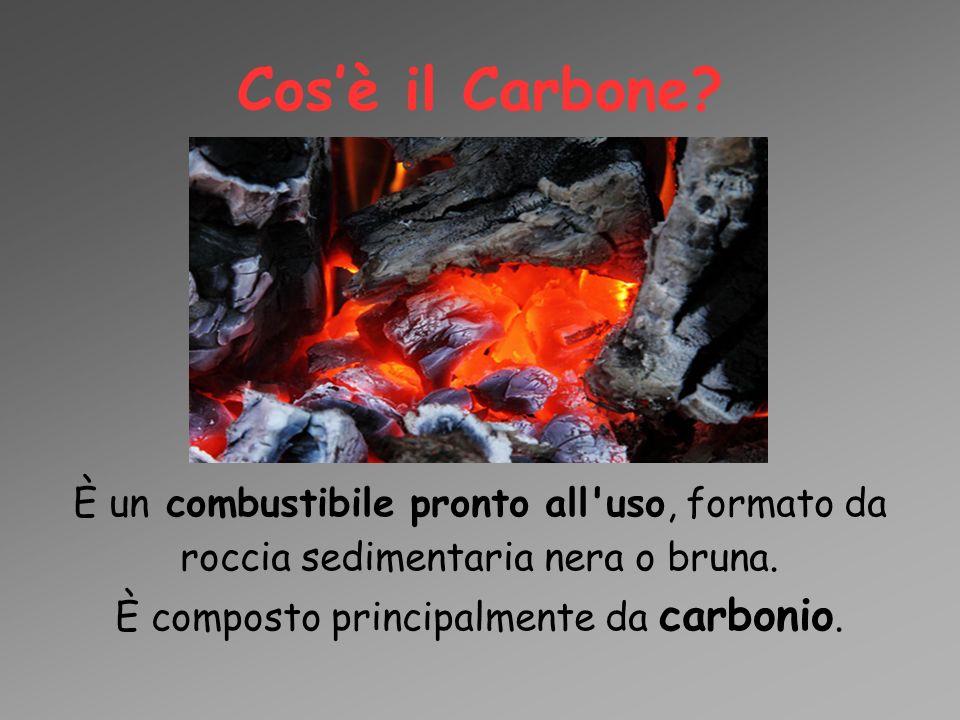 È composto principalmente da carbonio.